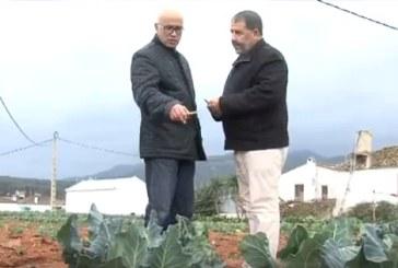Visite d'une délégation marocaine à la vallée Guadalhorce