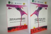 دراسة حول العنف القائم على النوع بإقليم شفشاون، تقاسم الممارسات الجيدة في مجال التحسيس